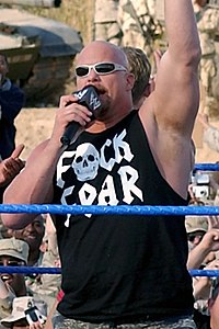 An image of Steve Austin .