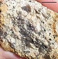 Stone Mtn granodiorite 1.jpg