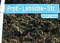 Strassenschild Prof Lebsche Str in Glonn 20070111 01.jpg