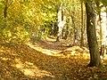 Strausseerundweg (Straussee Circular Way) - geo.hlipp.de - 29686.jpg
