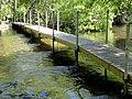 Stream - Garland Ranch Regional Park - Carmel Valley, CA - DSC06924.JPG