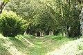 Sulgrave, church path - geograph.org.uk - 1297860.jpg