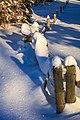 Sun Peaks Ski Resort - incredible snow crystals (sustained cold weather) (13653664154).jpg