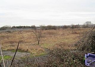 Town Moor, Sunderland