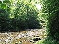 Sunlight on the River Allen (3) - geograph.org.uk - 850567.jpg
