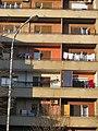 Sunny house (6905660009) (3).jpg