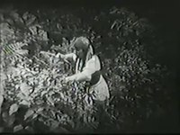 File:THE PERILS OF PAULINE (1914) - ch.8 Pearl White.webm