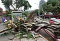 Taipei after Typhoon Soudelor 2015 09.jpg