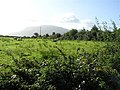 Tawley Townland - geograph.org.uk - 1482226.jpg