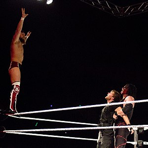 Team Hell No - However, Bryan and Kane became a cohesive unit when they focused on battling the members of the Shield, such as Dean Ambrose.