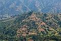 Terrace Farming in Nepal in Rakathum VDC-0362.jpg