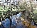 The River Teign, from Rushford Bridge - geograph.org.uk - 1248572.jpg