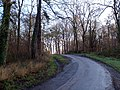 The Road through Roxton Wood - geograph.org.uk - 296086.jpg