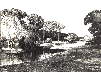 The Rother at Fittleworth.png