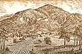 The Wines and Vines of California 1889.jpg