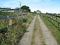 The lane at Mulfra - geograph.org.uk - 682551.jpg