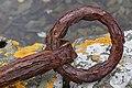 The old anchor - 2 (4917573524).jpg