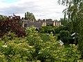 The rear gardens of Albert Road - geograph.org.uk - 483953.jpg