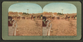 The ruins of streets and homes, of wrecked district at Van Ness and Vallejo Sts., San Francisco, from Robert N. Dennis collection of stereoscopic views.png