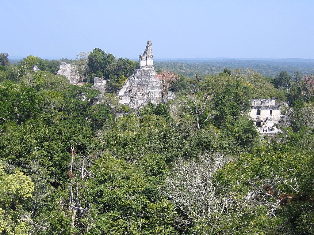 Tikal, Yaxha, Mirador, Palenque Tours