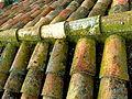 Tiled roofs, tejado,tejas.JPG