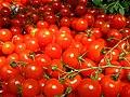 Tomatoes (4701305126).jpg
