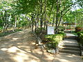 Tomb of General Choi Jeong-geoi and surroundings 05.JPG
