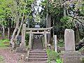 Torii gate of Araogawa-jinja shrine Satomiya.JPG