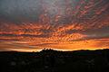 Torrita di Siena tramonto.jpg