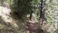 Tract to Mushkuri peak.png