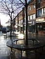 Tree seats, South Street, Exeter - geograph.org.uk - 684560.jpg
