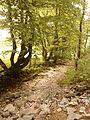 Trockenes Flussbett am Wegesrand - panoramio.jpg