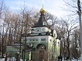 Tserkvy SPb 02 2012 4437.jpg