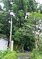 Tsukiyo Omizuan 01.jpg