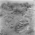 Tuin met bomen rotsen en ruine op de Taborberg in Galilea, Bestanddeelnr 255-0933.jpg