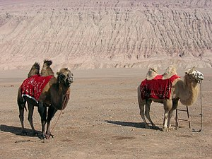 Turpan Depression - Basin scene near Flaming Mountains