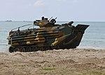 U.S., international forces conduct Cobra Gold exercise DVIDS249415.jpg