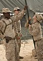 U.S. Marines with Battalion Landing Team, 3rd Battalion, 2nd Marine Regiment, 26th Marine Expeditionary Unit (MEU) set up tent support poles June 8, 2013, in Al Quweira, Jordan, during exercise Eager Lion 2013 130608-M-BS001-004.jpg