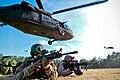 UH-60 Black Hawk 187 (13893365473).jpg