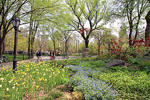 USA-NYC-Central Park-The Mall2.JPG