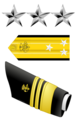 USA - PHS - O9 insignia.png