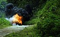 US Navy 090422-N-7130B-318 A fireball erupts as dynamite and TNT are used to clear boulders.jpg
