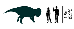 Udanoceratops size comparison.png