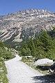 Vadret da Morteratsch - panoramio (61).jpg