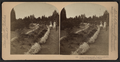 Vassar College grounds, Poughkeepsie, N.Y, by Littleton View Co. 3.png