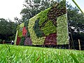 Vertical Garden during Lalbagh Flower show August 2013 - 1.JPG