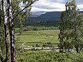 View from Kinakyle towards Cairngorm - geograph.org.uk - 531659.jpg