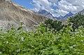 View from Machlu Village.jpg
