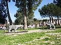 Villa-fiori 117.jpg