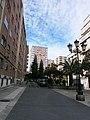 Vista de la calle Severo Ochoa.jpg